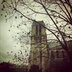 Cathedrale de Notre-Dame #Paris