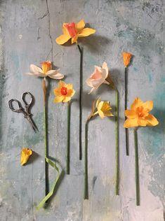 paper flower artist