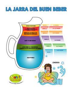 Nutricampeones, nos muestra en este gráfico como debe ser una correcta ingesta de liquidos. #Nutrición #Salud