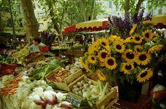 farmers market dream