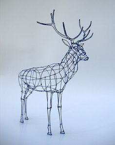 Wire Sculpture: Royal Stag in wireframe | Flickr - Photo Sharing!