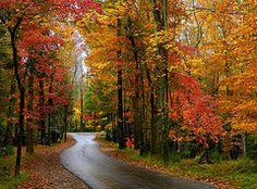 Autumn in the Smokey Mountains