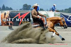 Equestrian Life's Photo - Steppin On Sparks & Andrea Fappani Cutting Horses, Western Pleasure Horses, Reining Horses, Beautiful Horses, Beautiful Things, Western Riding, Horse Pictures, Life Photo, My Passion