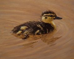 This astonishing #oils painting of a duckling by Ben Waddams will be available now available on ArtTutor Oil Painting Lessons, Like Image, Realism Art, Animal Paintings, Bird Art, Art Tutorials, Pet Birds, Color Mixing, Contemporary Art