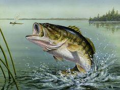 Large Mouth Bass Cross Stitch Pattern***L@@K***~~I SEND WORLD-WIDE ~Free