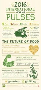 http://www.manitobapulse.ca/wp-content/uploads/2015/03/IYP_Infographic_Poster_2015_eng_update-139x300.jpg