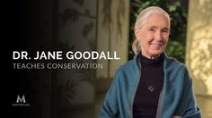 To create change is not by confronting something head on. It's by telling stories, meeting with people. Listen to them, and then try to find a way to reach their hearts. If we think locally and get together with other like-minded people, take action, we realise this's something we can do. - Jane Goodall