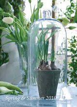Styling for Affari spring catalog 2010