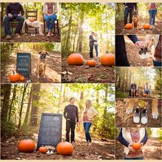 Apartments For Rent Dogs Ok Pumpkin Pregnancy Announcement, Pregnancy Announcement Photography, Halloween Pregnancy Announcement, Pregnancy Announcement Photos, Pregnancy Photos, Baby Pregnancy, Baby Announcements, Fall Maternity Pictures, Pumpkin Maternity Photos