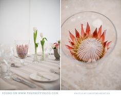 Nyagaka & Eva's Dreamy Spring Wedding Pink Table Decorations, Flower Decorations, Wedding Decorations, Wedding Dinner, Our Wedding Day, Wedding 2017, Wedding Stuff, Protea Wedding, Wedding Flowers