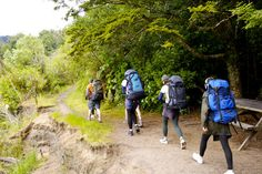 Trampers on Great Walk around Lake Waikaremoana, New Zealand.  Our big trip some day.  :o)