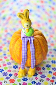 Easter rabbit sitting on pumpkin