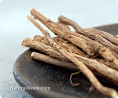 Ginseng found to help chemo cancer patients have more energy