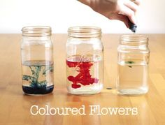 Teaching your preschooler science, fun activity that's simple and very affordable.