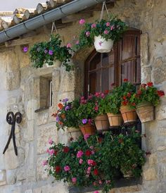 I love the look of terra cotta flower pots on a stone wall.