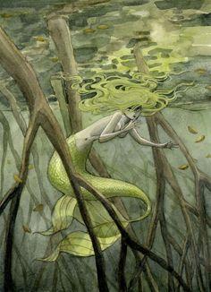 Mangrove Swamp Mermaid by reneenault on deviantART