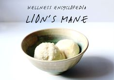 Wellness Encyclopedia: Lion's Mane and 2 Ways to Use It | Free People Blog #freepeople