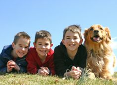 Discover great tips and guide on how to obedience train your pet dog.
