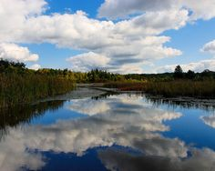 Mendon Ponds, Rochester, NY.