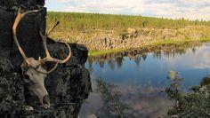 Suomen pyhät paikat ovat olleet portteja rinnakkaiseen maailmaan