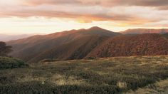 Razorback and Mount Feathertop, Alpine National Park, High Country, Victoria, Australia