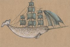 Brilliant whale drawings from flikr user Endofmarch