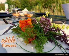 Gardening With Flowers You Can Eat!