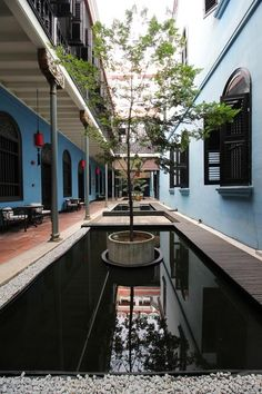 """- an 18-room boutique hotel that has been called the """"most atmospheric Chinese hotel that isn't in China"""" – complete with tranquil courtyards, Chinese carved screens, with other art nouveau influences. Chinese Courtyard, George Town, Courtyards, Green Plants, Hostel, Screens, Art Nouveau, Asia, Boutique"""