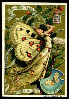 Liebig Butterfly Girls German edition, 1890. via cigcardpix