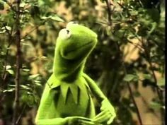 Muppets - Kermit - I