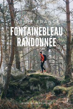 La randonnée de la Trans'Bleasarde parcourt la forêt de fontainebleau, en Île de France, sur 55km. Elle traverse différents massifs dont celui des trois pignon, très connu pour la randonnée des 25 Bosses. Réalisable en deux jours cette randonnée vous permettra de vous challenger et de préparer des treks.  #fontainebleau #blogvoyage #weekend #sport #france #iledefrance #25bosses #itineraire #challenge Road Trip, Visit France, Exotic Places, Blog Voyage, France Travel, Van Life, Trek, Travel Tips, Places To Go