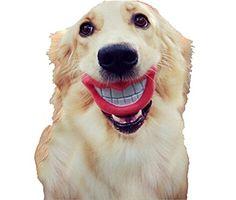 Stayy Kauspielzeug für Hunde, groß, roter Lippe, lustiges
