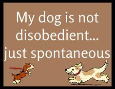 SIGN PLAQUE {My Spontaneous Dog} Rustic Primitive HARD WOOD animal Decor pet new #Handmade #ArtsCraftsMissionStyle