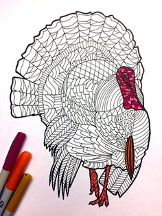 Cartoon Drawing Tips Turkey – PDF Zentangle Coloring Page – Scribble Drawing Cartoon Characters, Character Drawing, Cartoon Drawings, Love Drawings, Doodle Drawings, Easy Drawings, Pencil Drawings, Drawing Techniques, Drawing Tips