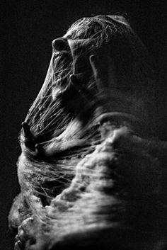 Black and White Pencil Art by Silvio Giannini Dark Art Photography, Creative Photography, Portrait Photography, Landscape Photography, Free Photography, Photography Camera, Photography Backdrops, Portrait Sombre, Dark Portrait