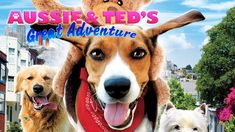 Aussie & Ted's Great Adventure (Full Movie) rated G.  Popcornflix