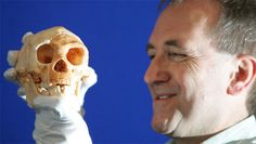 The remains of a small-statured hominid may be a new, hobbitlike, species called Homo floresiensis. Human Dna, Human Genome, Homo Floresiensis, Genome Project, New Scientist, Early Humans, Human Evolution, Anatomy And Physiology, Prehistory