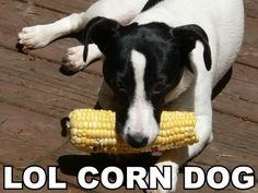 Corndog...yes, I think this is funny. So what of it.