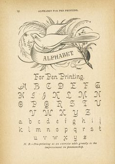 MudBay Images: Ornamental Antique Penmanship, in style!