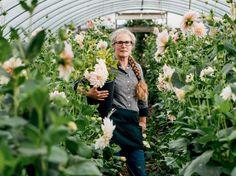 A Flower-Farming Renaissance: America's Slow Flower Movement - http://modernfarmer.com/2016/03/slow-flowers/?utm_source=PN&utm_medium=Pinterest&utm_campaign=SNAP%2Bfrom%2BModern+Farmer