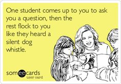 One student comes up to you to ask you a question, then the rest flock to you like they heard a silent dog whistle.
