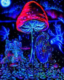 Mushrooms Trippy Art Fabric Cloth Rolled Wall Poster Print -- Size: (28    Cool, Trippy, and Bold Psychedelic Room Decor    Imagine a Home full of bold abstract psychedelic home decor.  You will find all kinds of bold, unique, trippy home decorations.  You will even find crazy rainbow colored home decorative accents.  Overall anything with vibrant colors, mandalas or trippy mushrooms is fun for most rooms in the home.  In fact I especially love this decor in game rooms, dens, man caves