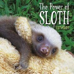 Power of Sloth