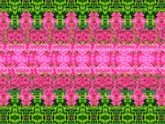 These are a thing again! I'm so glad I found this! Remember these? Hidden 3d Images, Hidden Pictures, Magic Eye Pictures, 3d Pictures, 3d Stereograms, Eye Illusions, Foto 3d, Illusion Pictures, Eye Tricks