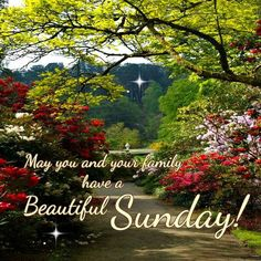 Have a beautiful and blessed Sunday! Happy Sunday Morning, Happy Sunday Quotes, Blessed Sunday, Good Morning Good Night, Happy Friday, Morning Greetings Quotes, Good Morning Greetings, Sunday Images, Morning Images