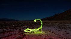 Le light painting comme on ne l'a jamais vu | The Creators Project