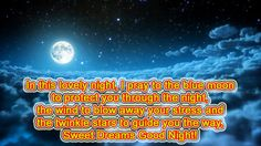 In this lovely night, I pray to the blue moon to protect you through the night, the wind to blow away your stress and the twinkle stars to guide you the way, Sweet Dreams Good Night! +30 You have already voted. Related posts: Good Night SMS – I wish moon Best Good Night SMS in ... Read more