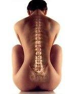 Письмо «Чтобы не болела спина, надо… сгорбиться! Посмотри, как:» — Технологии Омоложения — Яндекс.Почта