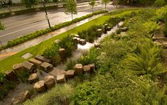 Rain Garden at the Oregon Convention Center