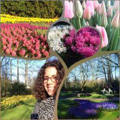 En nu is het alweer voorbij, Keukenhof seizoen 2016 is klaar! We hebben met het hele team meer dan 1 miljoen mensen mogen verwelkomen in het mooiste bloemenpark ter wereld. Meer dan 1.000.000 mensen vanuit de wereld, in 8 weken tijd, hoe bizar is dat?! Check de laatste Keukenhof vlog van 2016 op mijn youtubekanaal en mijn blog op www.addellen.nl